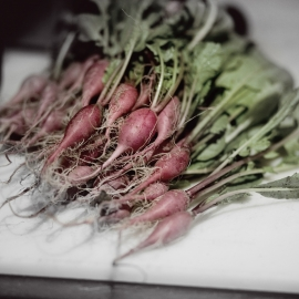 Radishes by Traverse City Photographer Thomas Kachadurian
