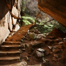Zion National Park by Traverse City Photographer Thomas Kachadurian