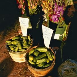 Farmers Market by Traverse City Photographer Thomas Kachadurian