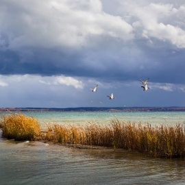 East Grand Traverse Bay by Traverse City Photographer Thomas Kachadurian
